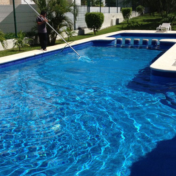 Best Pool Cleaning Service Refreshing Swimming Pool In Los Angeles